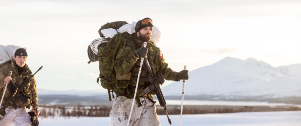 Cold Response 2020; Forsvaret, Norveç