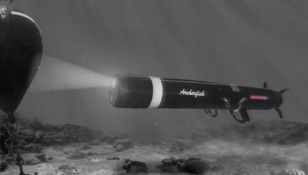 ABD Donanması Archerfish